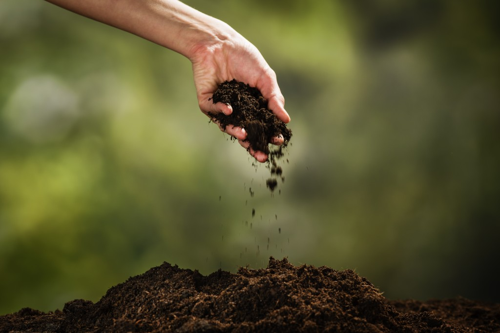 a hand pouring soil