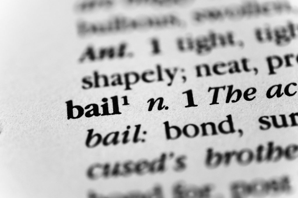 bail description on the dictionary